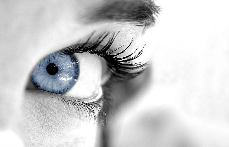 El Mes de la Estética de la Mirada