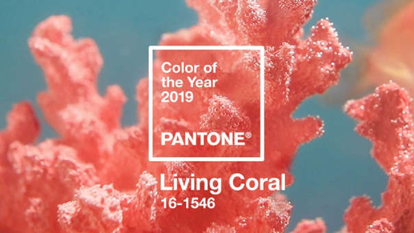 Pantone del año: Living Coral